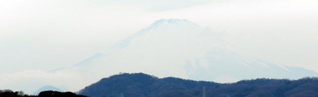 20130207Fuji1